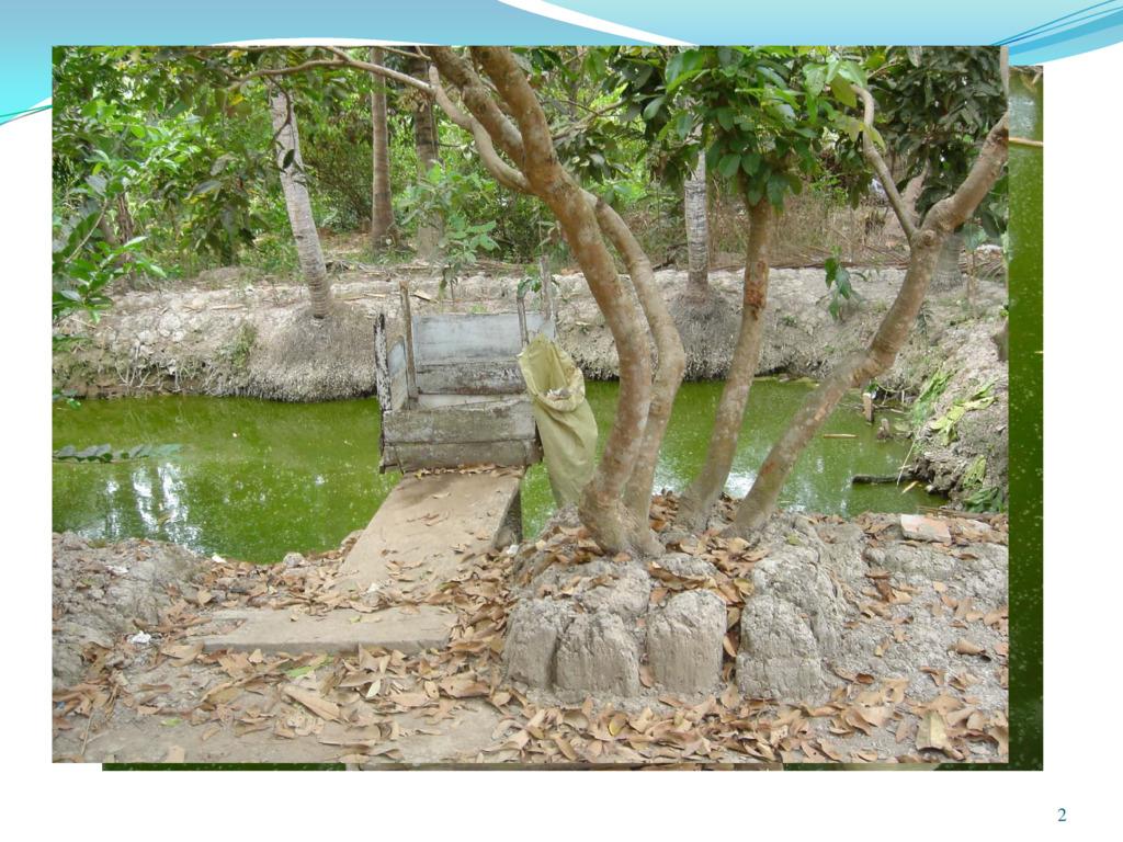 世界の水と衛生問題