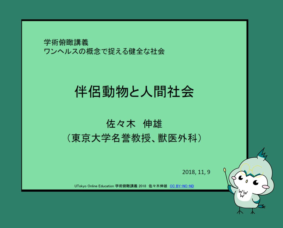 ☆新着情報【11月28日】☆